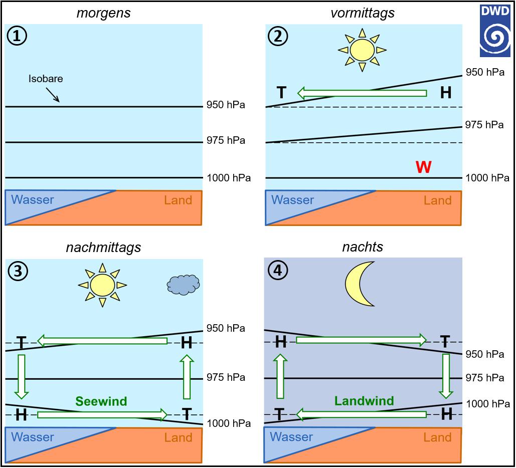 DWD: Landwind-Seewind-Zirkulation